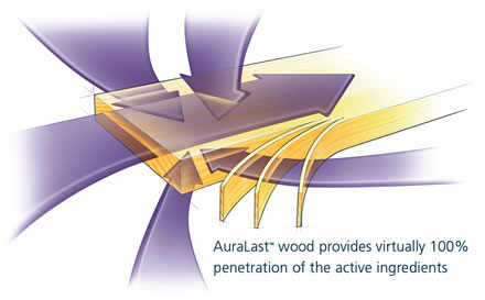 Jeld-Wen Auralast Wood Treatment for Windows