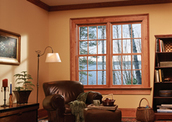 Jeld-Wen Hung Wood Window