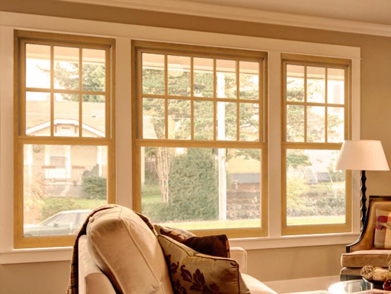 Windows Omaha Door Amp Window